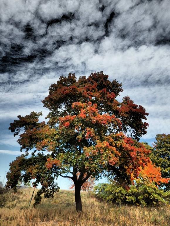 Хладно начало на есента. Очакват се снеговалежи в Карпатите - отложете пътуванията до Трансалпина и Трансфъгърашан