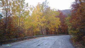Есен в Панагюрски колонии