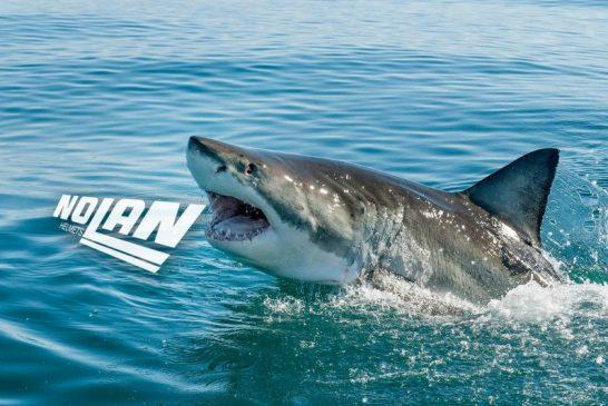 Sharkпоглъщат каските Nolan